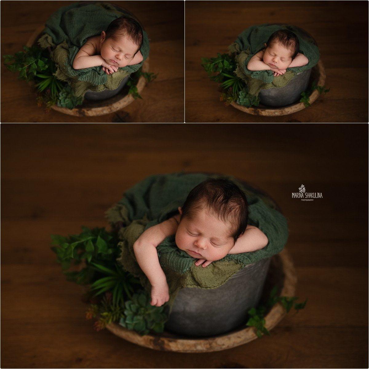 foto neonato a Verona - ancora riposo nel secchio!